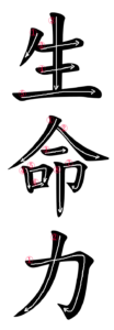 Kanji Stroke Order for 生命力
