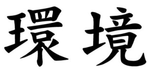 Japanese Word for Circumstance