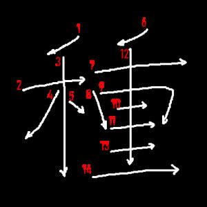 """Jouyou Kanji """"種"""" Stroke Order"""
