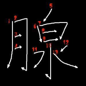 """Jouyou Kanji """"腺"""" Stroke Order"""