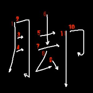 """Jouyou Kanji """"脚"""" Stroke Order"""