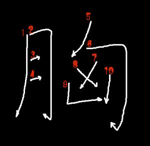 """Jouyou Kanji """"胸"""" Stroke Order"""