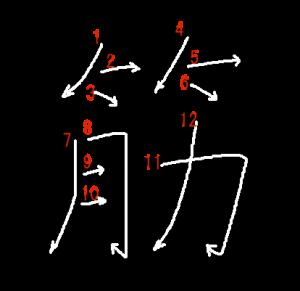 """Jouyou Kanji """"筋"""" Stroke Order"""