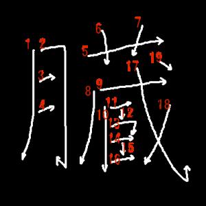 """Jouyou Kanji """"臓"""" Stroke Order"""