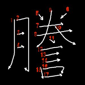 """Jouyou Kanji """"謄"""" Stroke Order"""