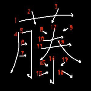 """Jouyou Kanji """"藤"""" Stroke Order"""