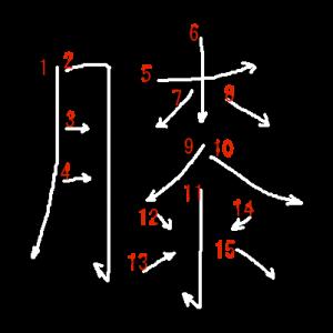 """Jouyou Kanji """"膝"""" Stroke Order"""