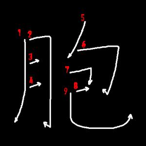 """Jouyou Kanji """"胞"""" Stroke Order"""