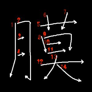 """Jouyou Kanji """"膜"""" Stroke Order"""